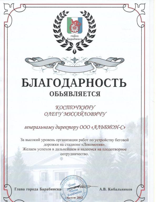 mini_15. Благодарность Барабинск 2012